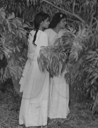 au bord de la rivière. Letchis,Tuléar, Madagascar,1958,,Collection Leïla Karim